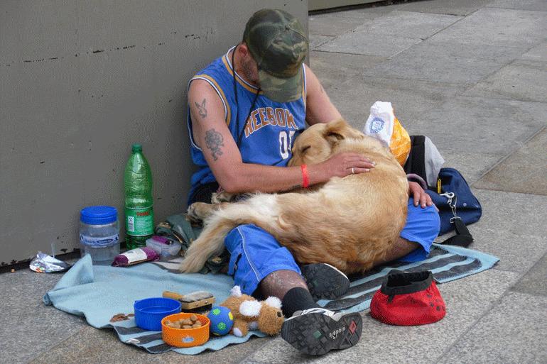 Sans-abris avec chien par_londonicious-770