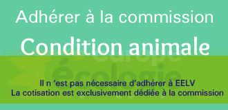 Adhérer à la commission condition animale